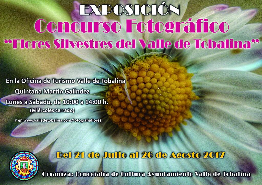 Flores silvestres valle de tobalina en oficina de turismo for Oficina turismo burgos