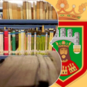 Biblioteca gonzalo de berceo biblioteca en burgos for Sala gonzalo de berceo